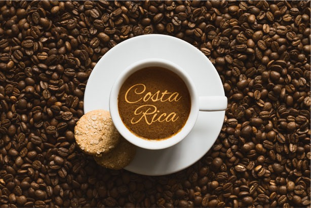 Costa Rica's coffee